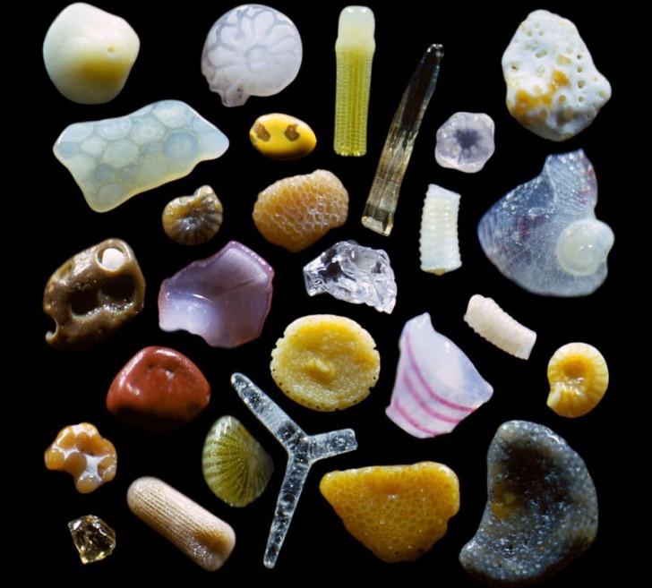 Grains de sable au microscope