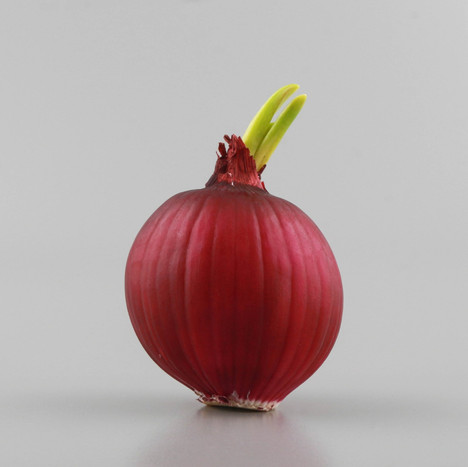 Benefits of Red Onion