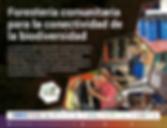 FORESTERIA COMUNITARIA ENTREGA 2020_Mesa