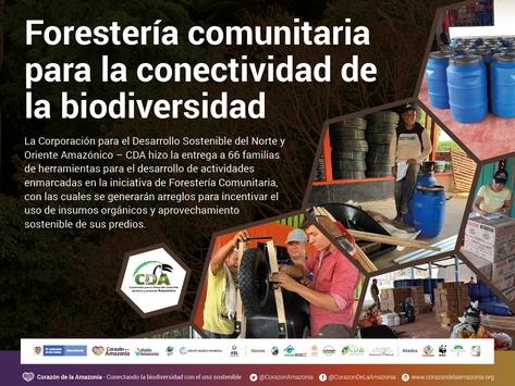 Forestería comunitaria para la conectividad de la biodiversidad.