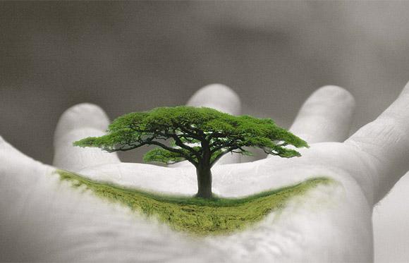 27-inspiring-hands-palm