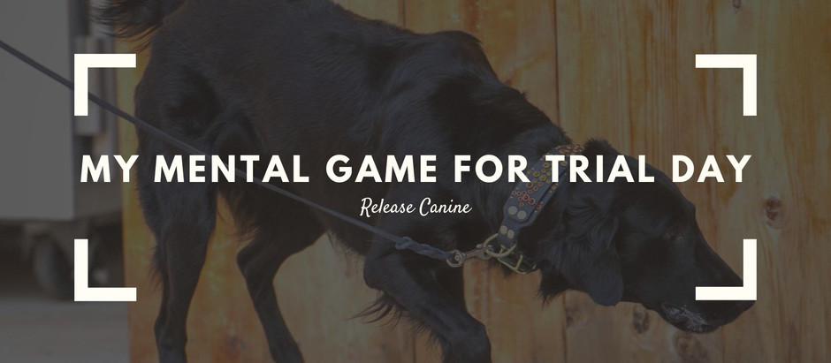 A Trial Day - My Mental Game