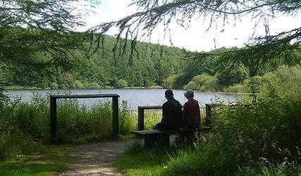 macclesfield forest.jpg