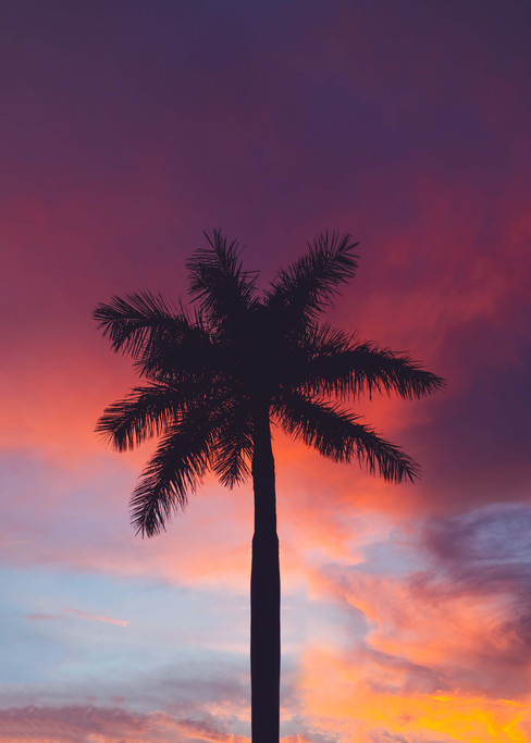 Miami WEBSITE-9.jpg