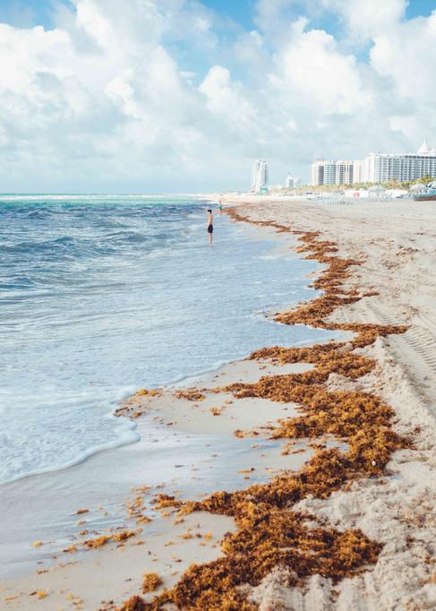 Miami WEBSITE-7.jpg