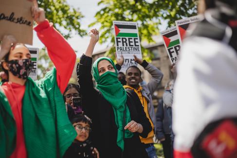 Palestine Protest-4.jpg
