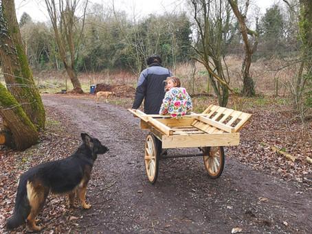 New Cart!!