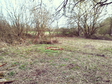 New Glade cleared!