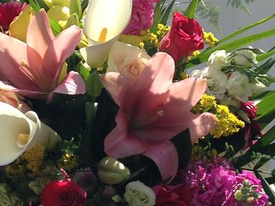 Bouquet of colour