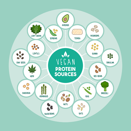 vegancure-vegan-protein-sources.png