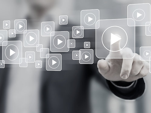 Digital Diversity Professional Subscription Box (Employee)