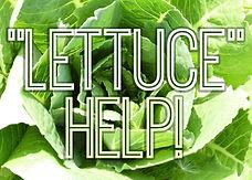 lettuce_17562ac.jpg
