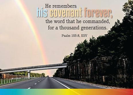 rainbow_20691ac.jpg