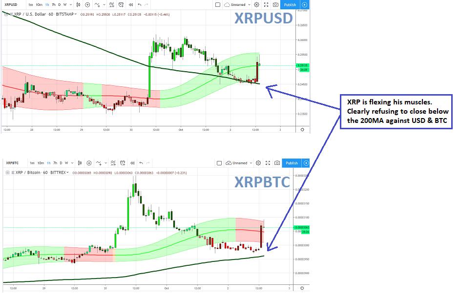 Ripple Price On XRPUSD And XRPBTC Charts