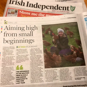 Irish Independent January 15 2019