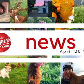 Newsletter April 2019