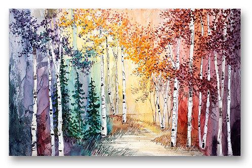 'Enchanted Woods'