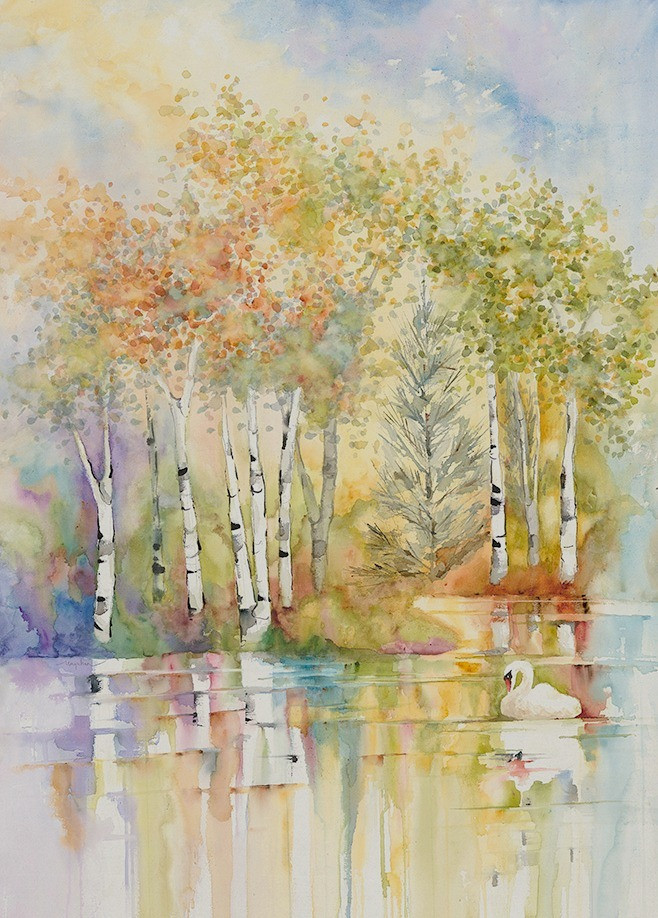 Birch tree landscape with water reflection as a swan glides by. Giclee print of watercolor by Kate Moynihan artist, $150