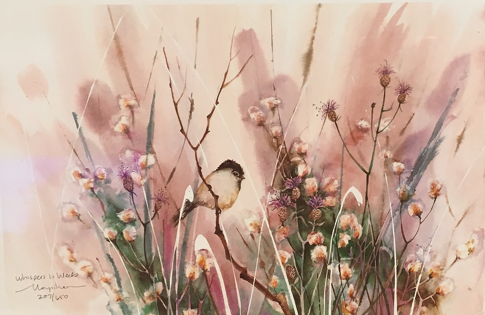 Original watercolor of chickadee in weeds by Kate Moynihan