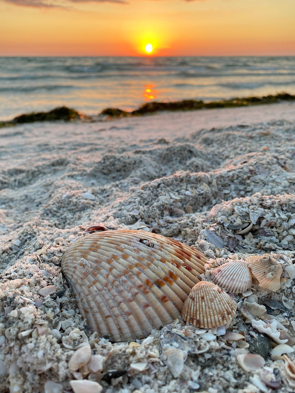 Pass-a-Grille Beach, Florida.