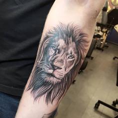 Lion portrait 🦁 done today for Dennis ?