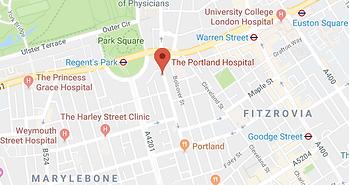Portland Map.png