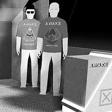 AWAKE Security 10' x 10'