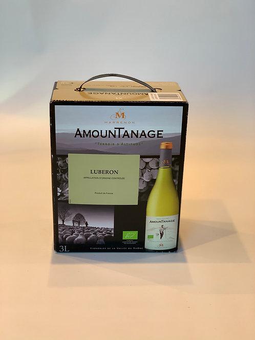 AOC Luberon Blanc - Amountanage
