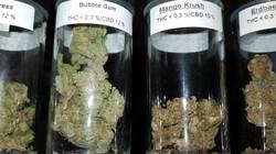 Bubble Gum u. Mango Krush