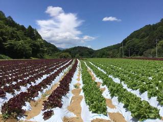 長野県・南相木村を知る!クラフトビール交流会