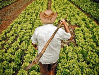 Previdência rural: veja como era o projeto de Bolsonaro e como ficou