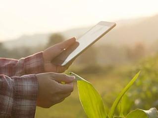 Agronegócio movimenta R$ 578,2 bilhões e põe foco em inteligência de dados