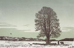 winterabend-in-der-thurebene_orig