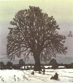 winterabend-bei-der-linde_orig