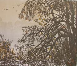 Herbstmorgen am Nussbaumersee 2