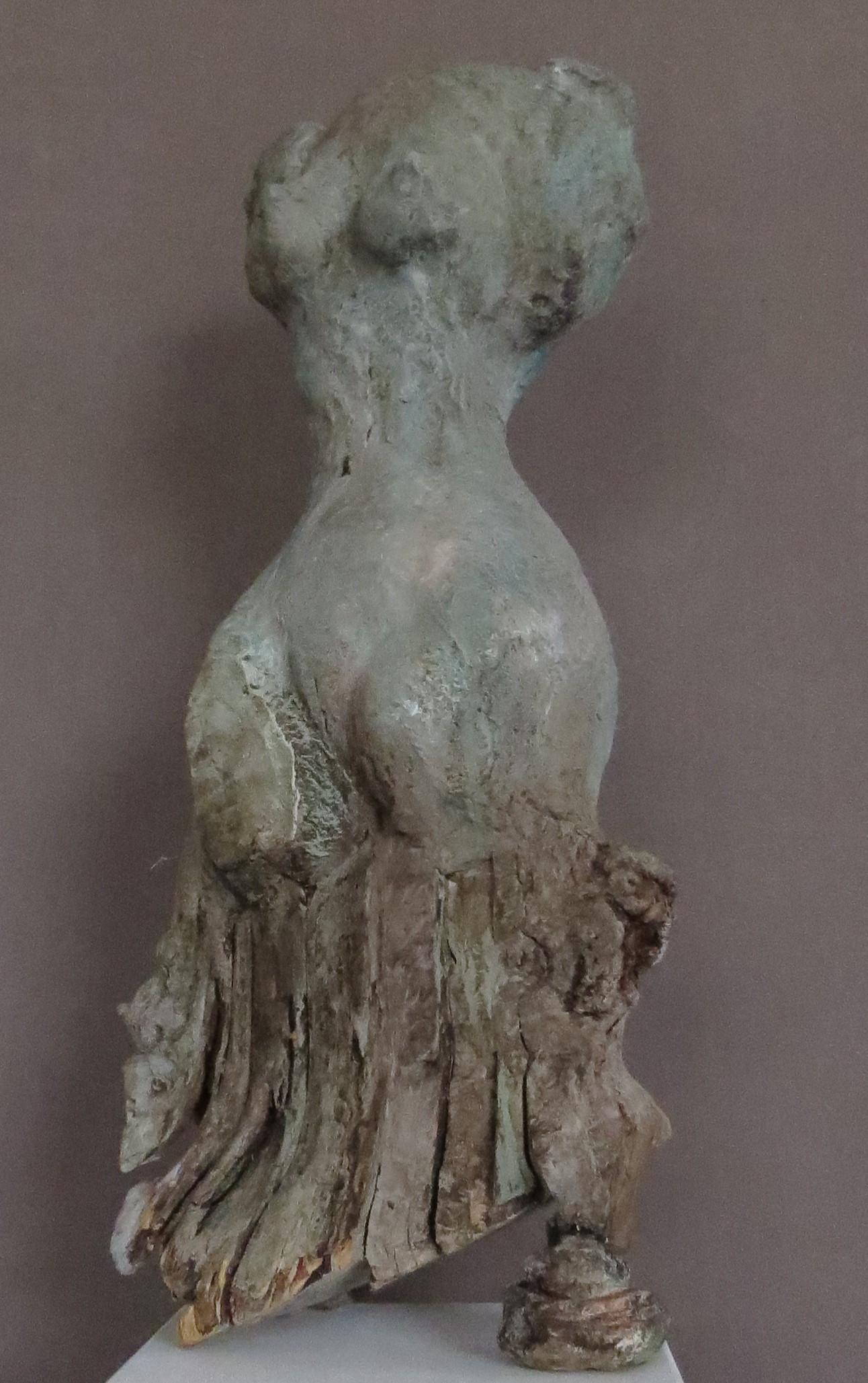 torso