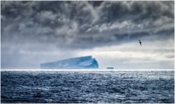 DO_Ice and Rain_Ian Robertson