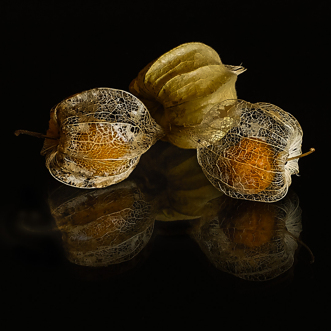 Gooseberries_Open-Print_Mieke-Wood