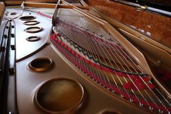 6 piano internals_Donald Howell