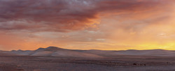 Dawn in the Dunes-Pano for web