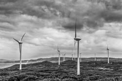 Wind making machines_Carolyn Cross