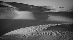 DS_Sand Sea_Shannon Warner