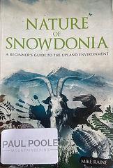 Nature of Snowdonia.jpg