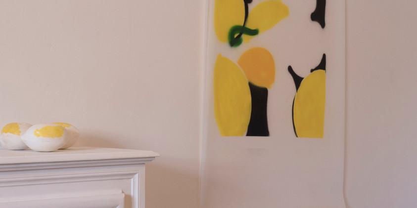 citrons  lézard story, 13h50