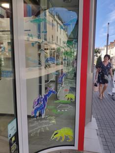 vitrines de Seguin Opticiens