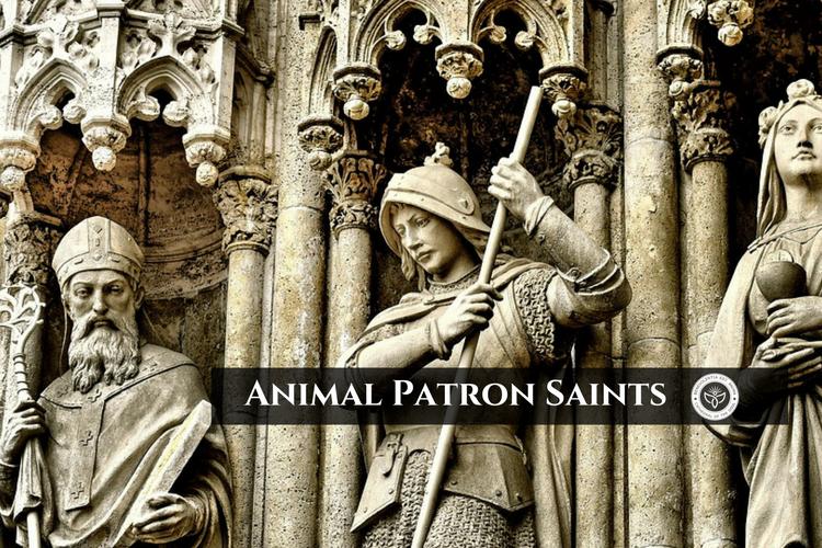 Animal Patron Saints