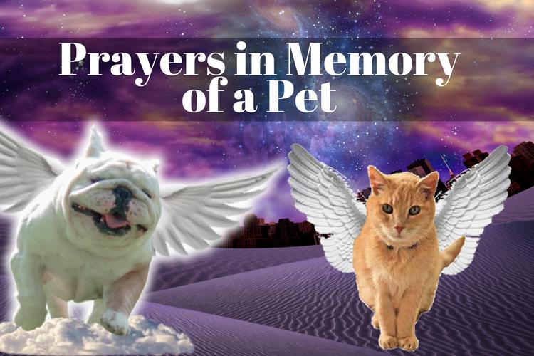 Prayers in Memory of a Pet