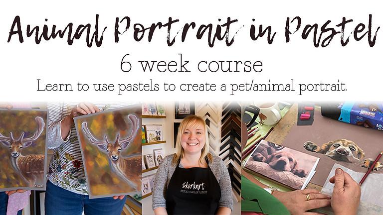 Animal Pastel Portrait 6 week course