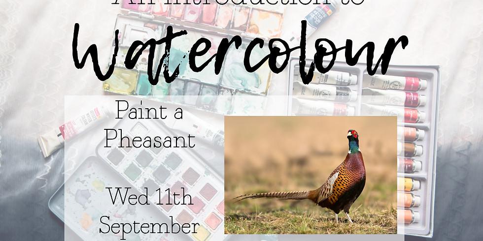Intro to Watercolour, Pheasant 11th September