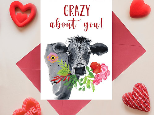 Grazy about you! Valentines, Anniversary Greetings Card